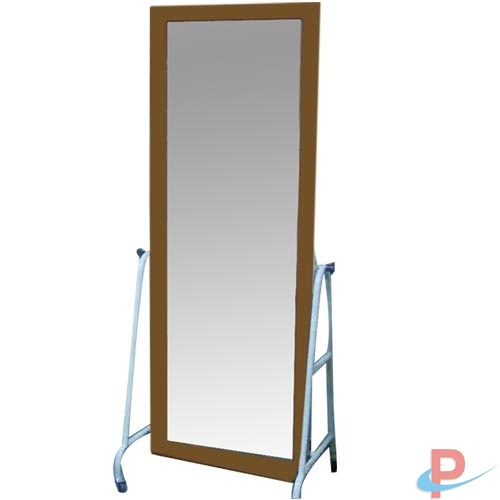 Postural Training Mirror